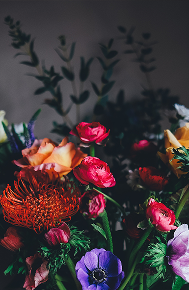 FloraLady